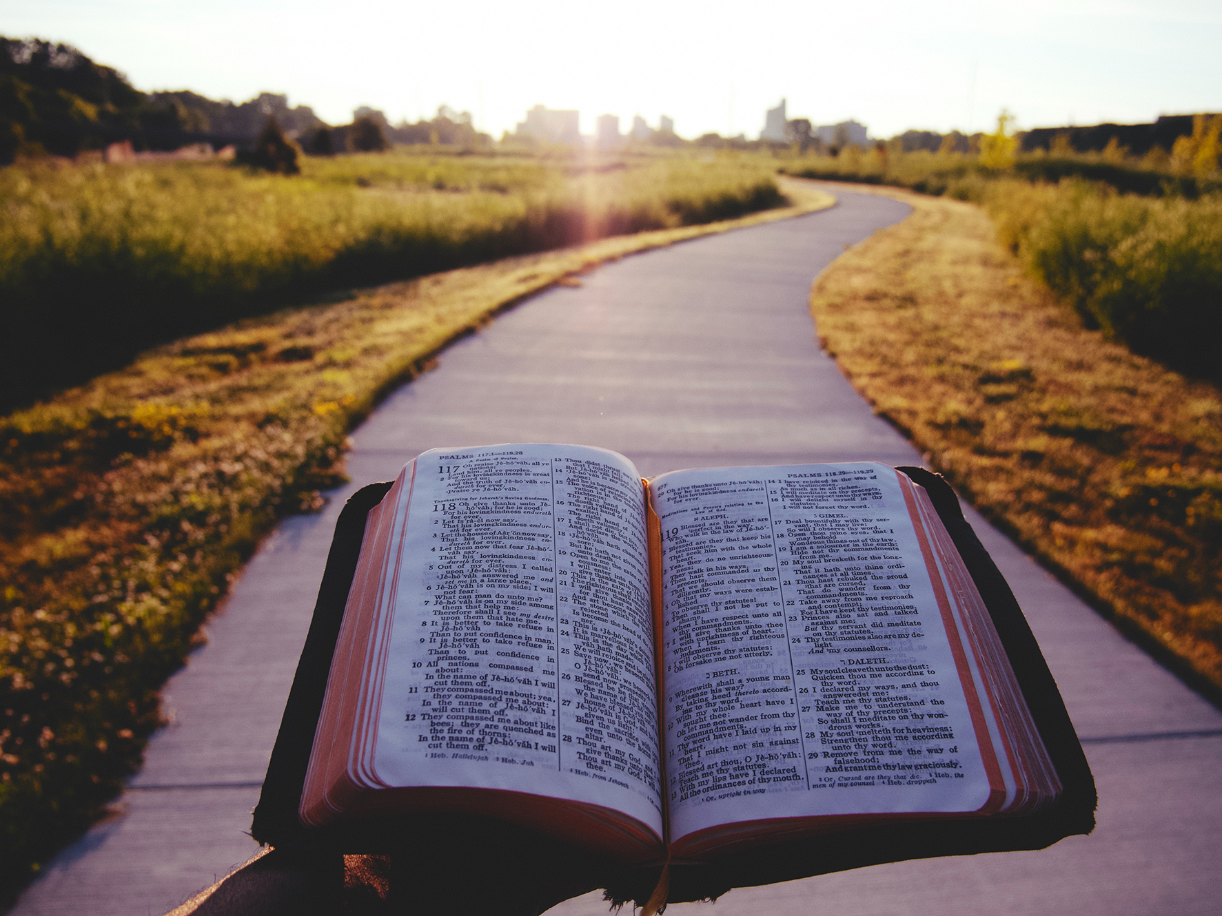 5 questions to ask when reading your Bible